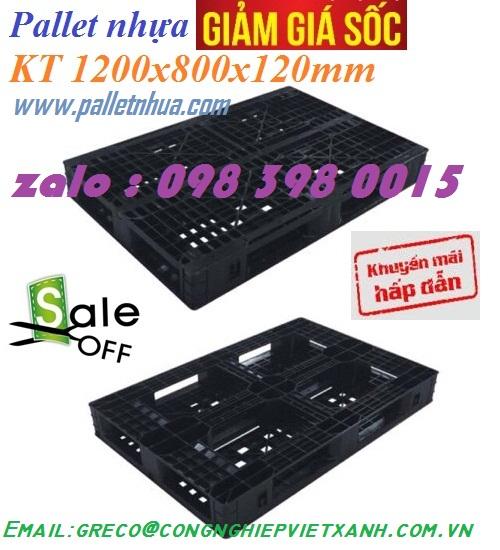 Pallet Nhựa kT 1200 x 800 x 120mm